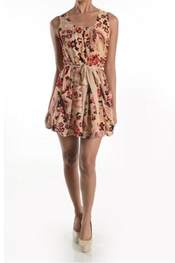 Sweet Sinammon - Vintage Floral Dress