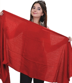 Exotic India - Plain Pashmina Shawl Scarf