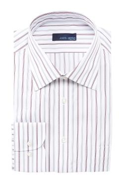 Joseph Abboud Collection  - Fancy Stripe Regular Fit Dress Shirt