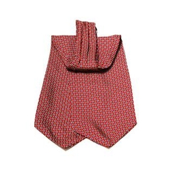 Dapper World - Silk Printed Ascot Tie