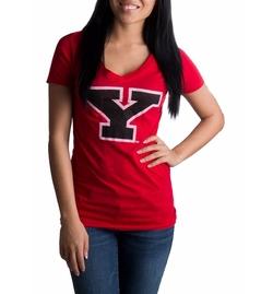 Ann Arbor T-shirt Co. - YSU Penguins Vintage Style Shirt
