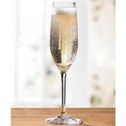 Wine Enthusiast - Break-Resistant Champagne Flute Set