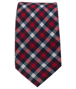 The Tie Bar - Washington Plaid