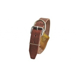 "Dean & Tyler -  ""B and B"" Brown Basic Leather Dog Collar"