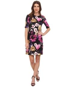 Vince Camuto - 3/4 Sleeve Floral Printed Ponte Dress