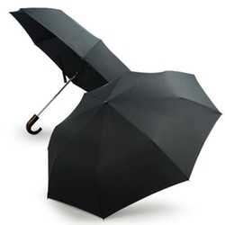 Lavievert - Automatic Open & Close Umbrella