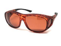 Live Eyewear - Cocoons Live Eyewear Sunglasses