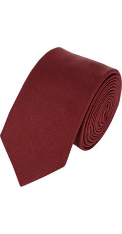 Lanvin - Faille Neck Tie