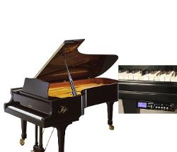 Kaps of Dresden  - Model C Auto Play Grand Piano