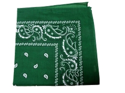 One Source Shop - Paisley Bandana Scarf