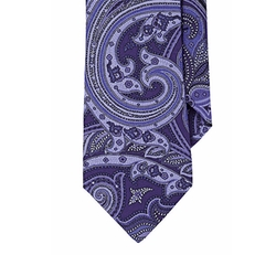 Ted Baker - Paisley Faille Necktie