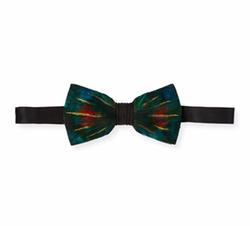 Brackish Bowties - Leonardo Feather Bow Tie