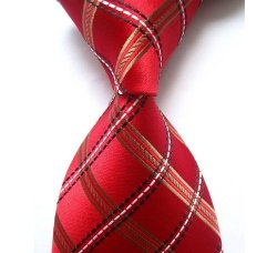Other - New Classic Checks Necktie