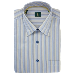 Robert Talbott - Stripe Sport Shirt