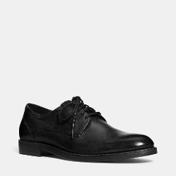 Coach - Andrew Oxford Shoes