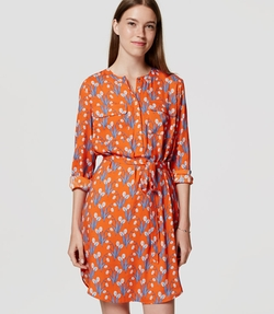 Loft - Tulip Shirtdress
