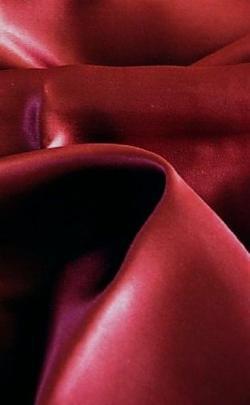 Feeling Pampered - Silk Charmeuse Duvet