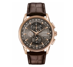 Citizen  - World Chronograph Time Watch