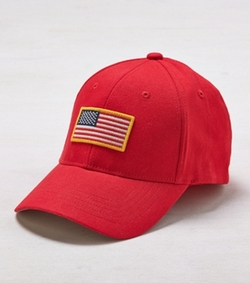 AEO  - Flag Fitted Baseball Cap