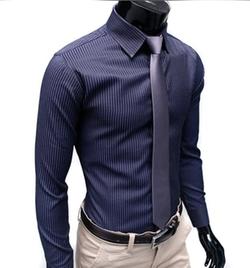 Silkworld - Stripe Fitted Dress Shirts