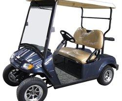 CitEcar - 2P Street Legal Golf Cart