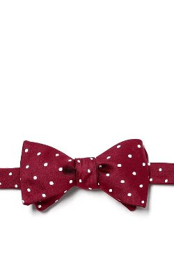 Principessa Regale  - Dots Self Tie Bow Tie