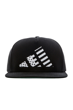 LPD New York - Mountain Flag Snapback Hat