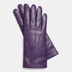 Coach - Leather Gloves