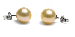Pure Pearls - Cultured Pearl Stud Earrings