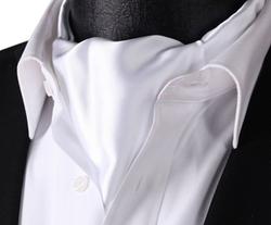 Set Sense - Solid Jacquard Woven Ascot Tie