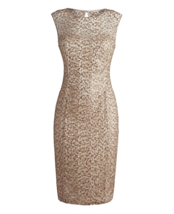 Joanna Hope - Sequin Lace Dress