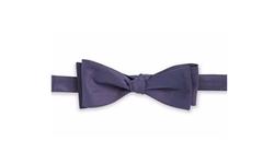 Black Brown 1826  - Textured Silk Bow Tie
