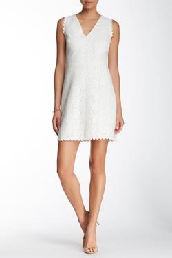 Max Studio  - Sleeveless V-Neck Lace Dress