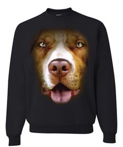 Tee Hunt - Pit Bull Face Sweatshirt
