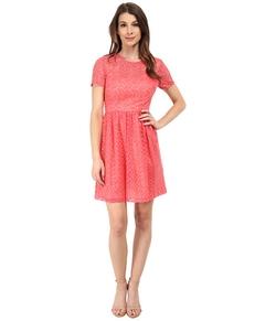 Trina Turk - Paris Dress