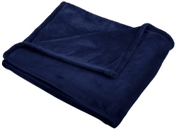 Pinzon - Velvet Plush Throw Blanket