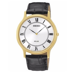 Seiko - Solar Leather Strap Watch