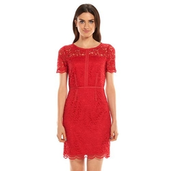 Elle -  Lace Sheath Dress