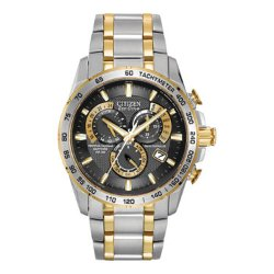 Citizen Eco-Drive - Mens Perpetual Calendar Watch
