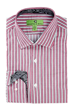 Bristol & Bull - Stripe Regular Fit Dress Shirt