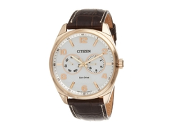 Citizen - Eco-Drive Dress Watch