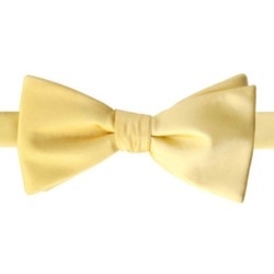 Stafford - Satin Solid Bow Tie
