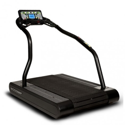 Woodway - Pro Treadmill