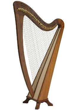 EMS  - Alyssa Harp