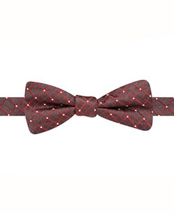 Ryan Seacrest Distinction  - Mini Grid Pre-Tied Bow Tie
