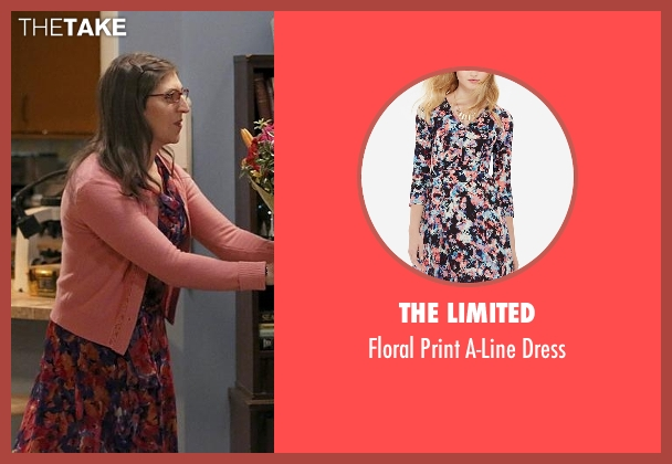 The Limited dress from The Big Bang Theory seen with Amy Farrah Fowler (Mayim Bialik)
