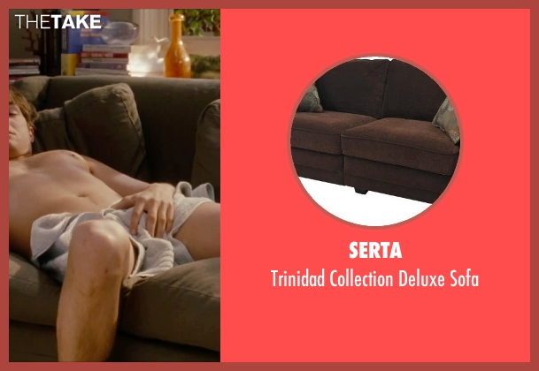 Serta sofa from No Strings Attached seen with Ashton Kutcher (Adam Franklin)