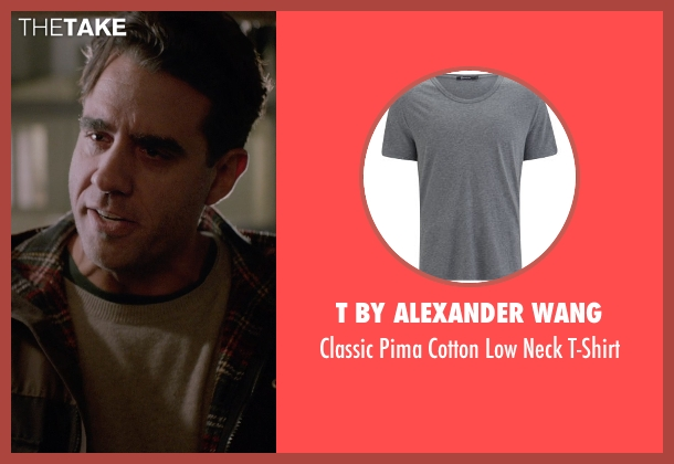 T By Alexander Wang gray t-shirt from Adult Beginners seen with Bobby Cannavale (Danny)