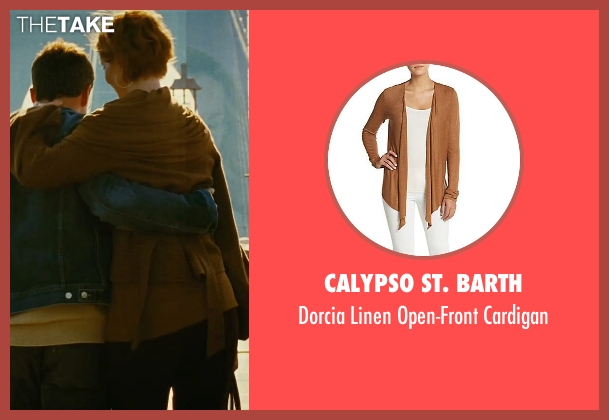 Calypso St. Barth brown cardigan from Sex and the City seen with Cynthia Nixon (Miranda Hobbes)
