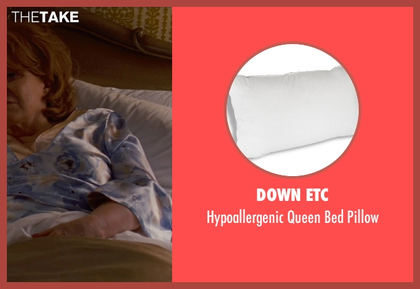Down Etc pillow from Silver Linings Playbook seen with Jacki Weaver (Dolores)